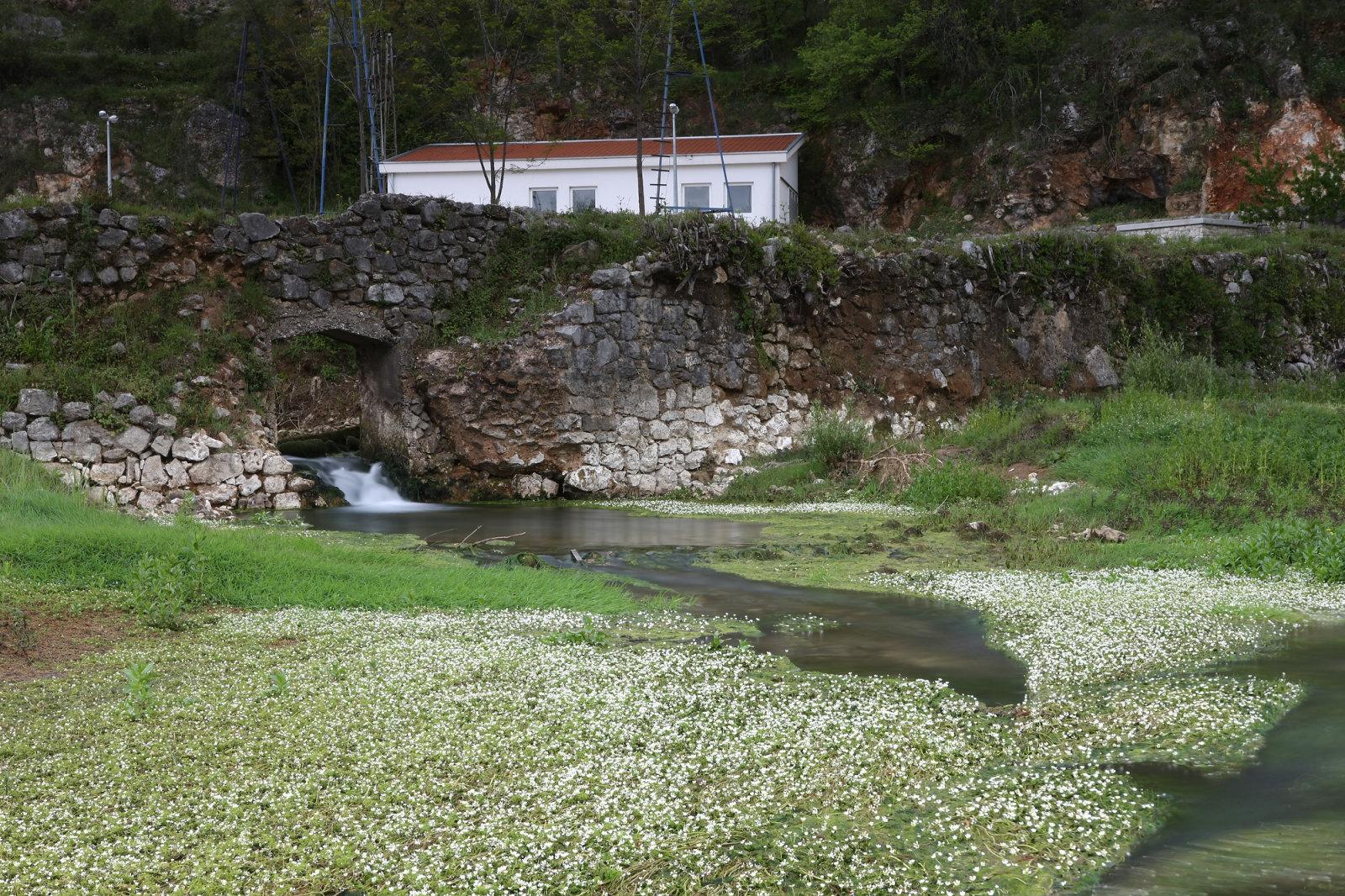 Grudsko Vrilo